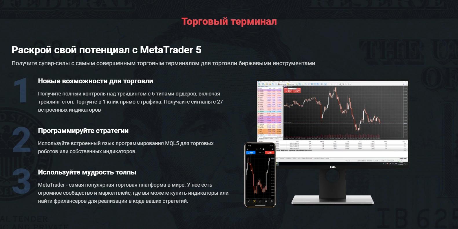 Vizavi и MetaReader5