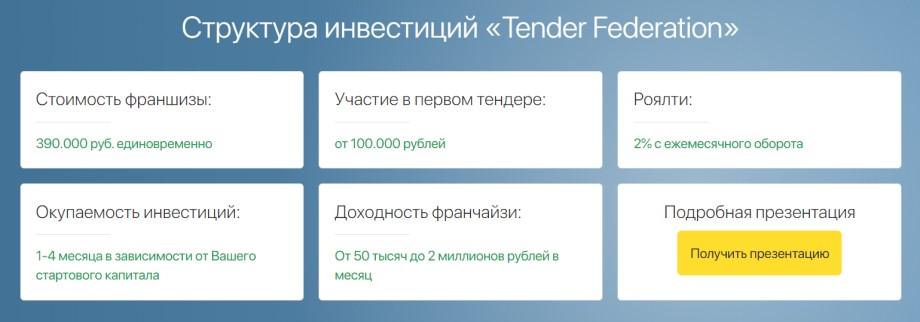 Франшиза Tender Federation - структура инвестиций