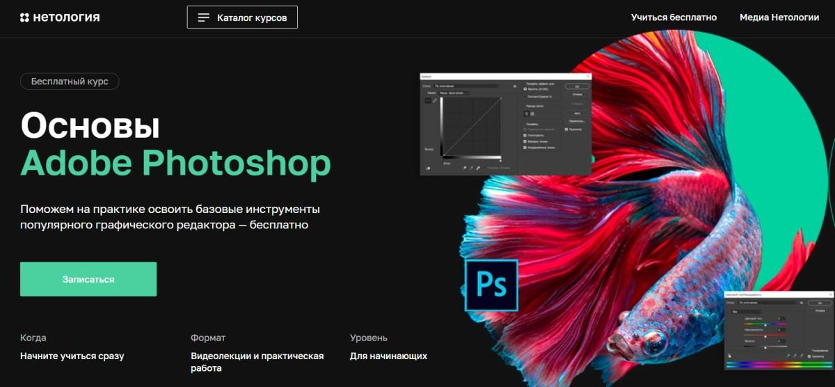 Основы Adobe Photoshop (бесплатный курс от Нетологии)